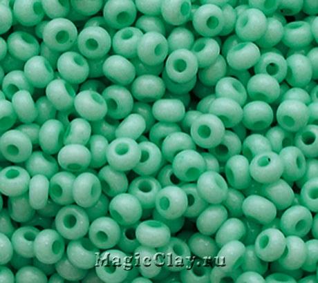 Бисер чешский 10/0 Пастельные тона, 03164 Green, 41гр