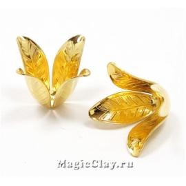 Шапочка для бусины Лилия 22х17мм, цвет золото, 1шт