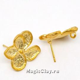 Швензы гвоздики Летний Секрет, цвет золото